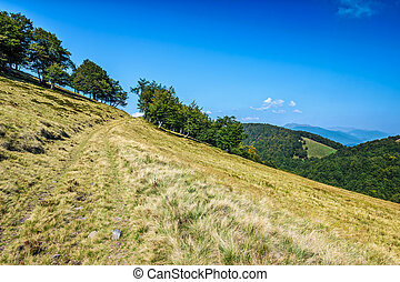 path through the mountain ridge - summer mountain landscape....