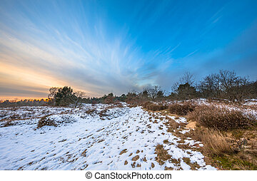 Winter landscape in Drenthe with thin layer of snow - Dutch...