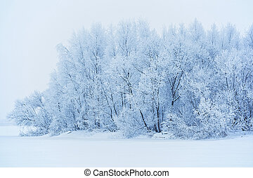 Winter landscape with snow-covered trees in Russia