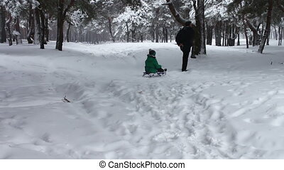 Grandpa rolls his little grandson of the snowy winter forest on a sledge