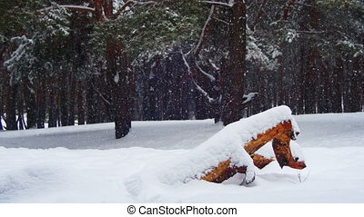 Snowfall Background in Winter Pine Forest with Snowy...