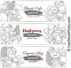 Mushrooms vector sketch organic shop banners - Edible...