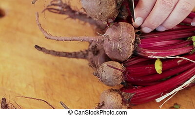 Cut Beets - Woman hands cuts beets with a kitchen knife.
