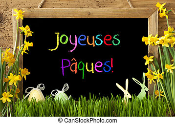 Narcissus, Egg, Bunny, Colorful Joyeuses Paques Means Happy...
