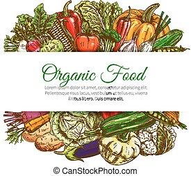 Organic food vegetables harvest vector poster - Vegetables...