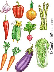 Vegetables vector sketch isolated icons - Vegetables sketch...