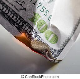 100 USD burn