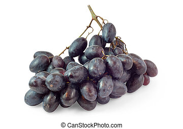 bunch of black grapes isolated on a white background