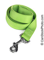 Green Dog Leash Isolated on White - Green dog leash isolated...