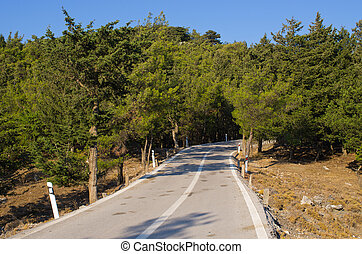 Road in the forest on Rhodes island, Greece - Road in the...