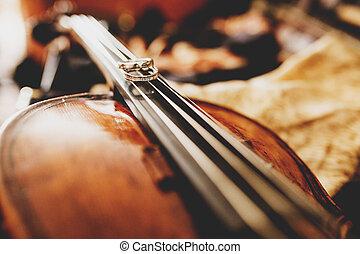 Delicate weding rings lie on the strings