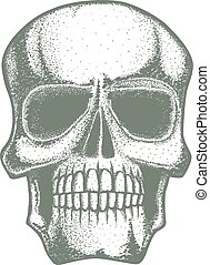 Vector skull illustration. Hand drawn skull. Spooky and...