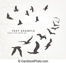 wedge of birds flying in sky - wedge of birds flying in the...