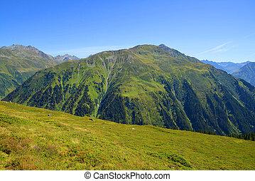 Summer mountain landscape near Davos, Canton Grison,...