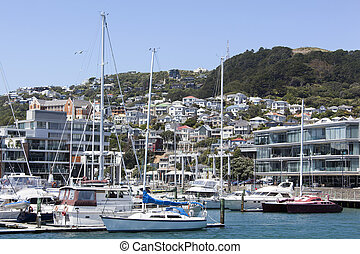 Wellington City Marina - The view of the marina with Mount...