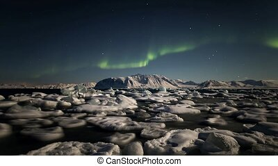 Arctic - Green Northern Lights over the fjord - Northern...