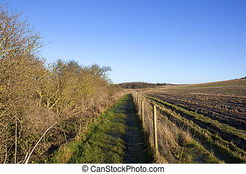 yorkshire wolds bridleway - a yorkshire wolds landscape with...