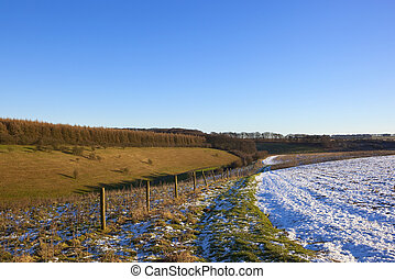 yorkshire wolds valley - a grassy valley with mixed woodland...