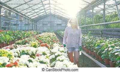 Female gardener checking flowers and smiling. - Female...