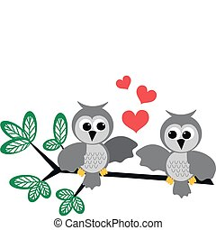 owls in love - two owls in love