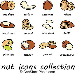 vector nut icons collection