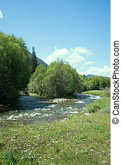 mountain river flows in forest under bias - Mountain river...