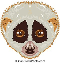 Slow Loris Sketch