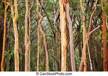 Abstract Australian Eucalyptus forest illustration -...
