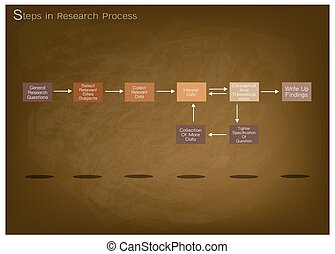Set of Eight Step in Research Process - Business and...