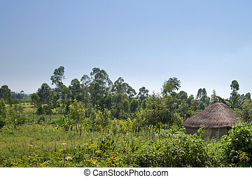 African traditional huts in Kenya - Rural African landscape...