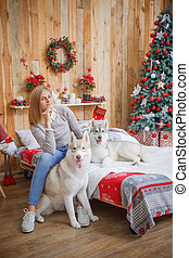 Girl with husky in bed near Christmas tree - Girl with husky...