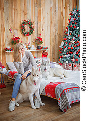 Girl with husky dog in bed near Christmas tree