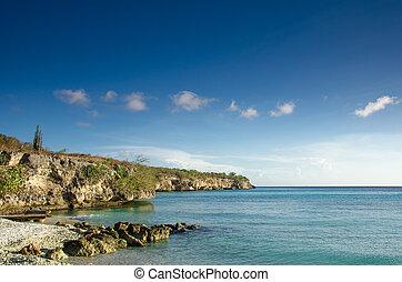 Beach on a Caribbean Island - Sandy Beach covered with...
