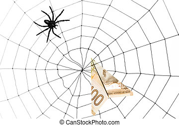 Spider Web and dollar, business concept