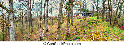 panorama in Ardennes country side - forest spring panorama...