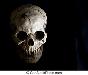 Face of Human Skull in Shadow - Front-view of an old,...