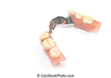 Partial denture upper side - dental prosthetics isolated on...