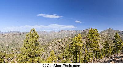 Central Gran Canaria, natural park Pilancones in San...