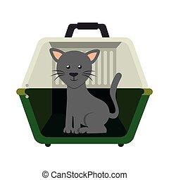 cute cat in transport box