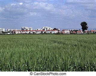 Or Yehuda Ramat Pinkas March 2006 - Ramat Pinkas near Or...