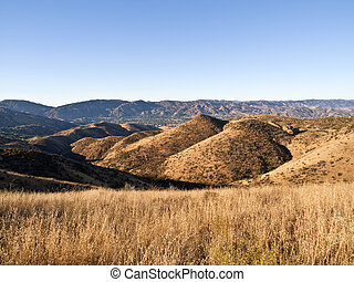 Simi Hills California - Late summer grass in early morning...