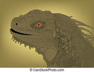 Iguana head - Detailed editable vector illustration of an...