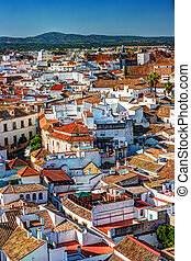 Aerial view of Cordoba city in Spain. Ciityscape with old...