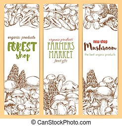 Mushrooms vector sketch banners set - Mushrooms banners set....