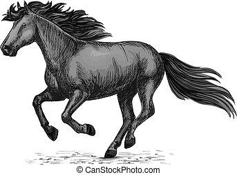 Black wild horse running on races vector sketch