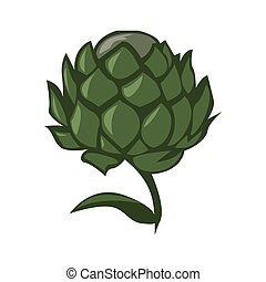 artichoke color illustration design
