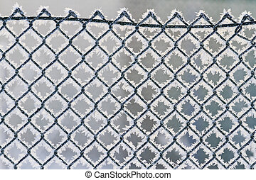 snow-covered fence  with frost