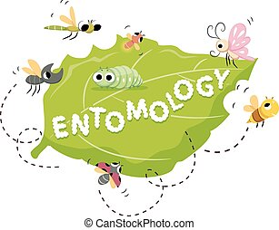Entomology - Typography Illustration Featuring the Word...