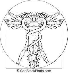 Vitruvian Man Caduceus - Caduceus medical symbol Vitruvian...