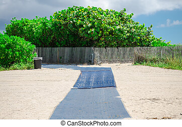 View of Miami Beach sandy path with Palm trees